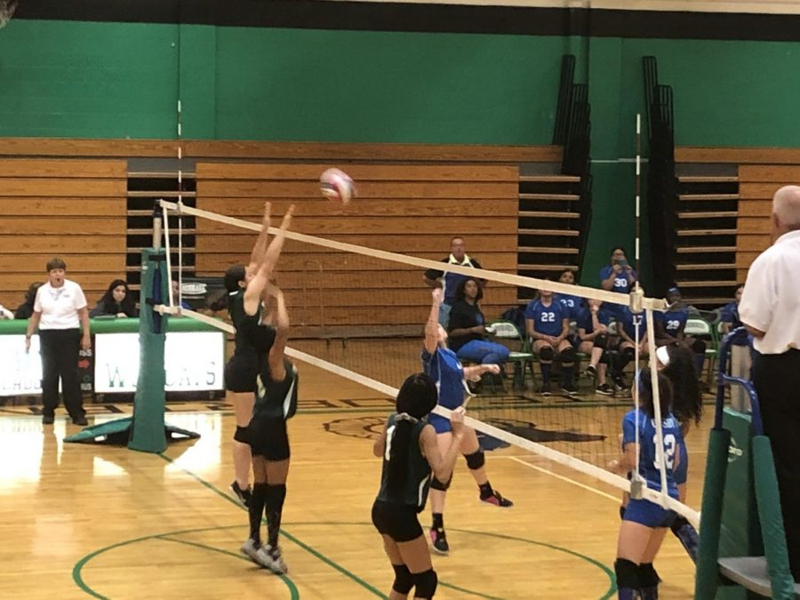 Wilby Volleyball to Honor Seniors Wednesday Night